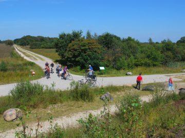 Natuurpark Veenland: grenzeloos veen