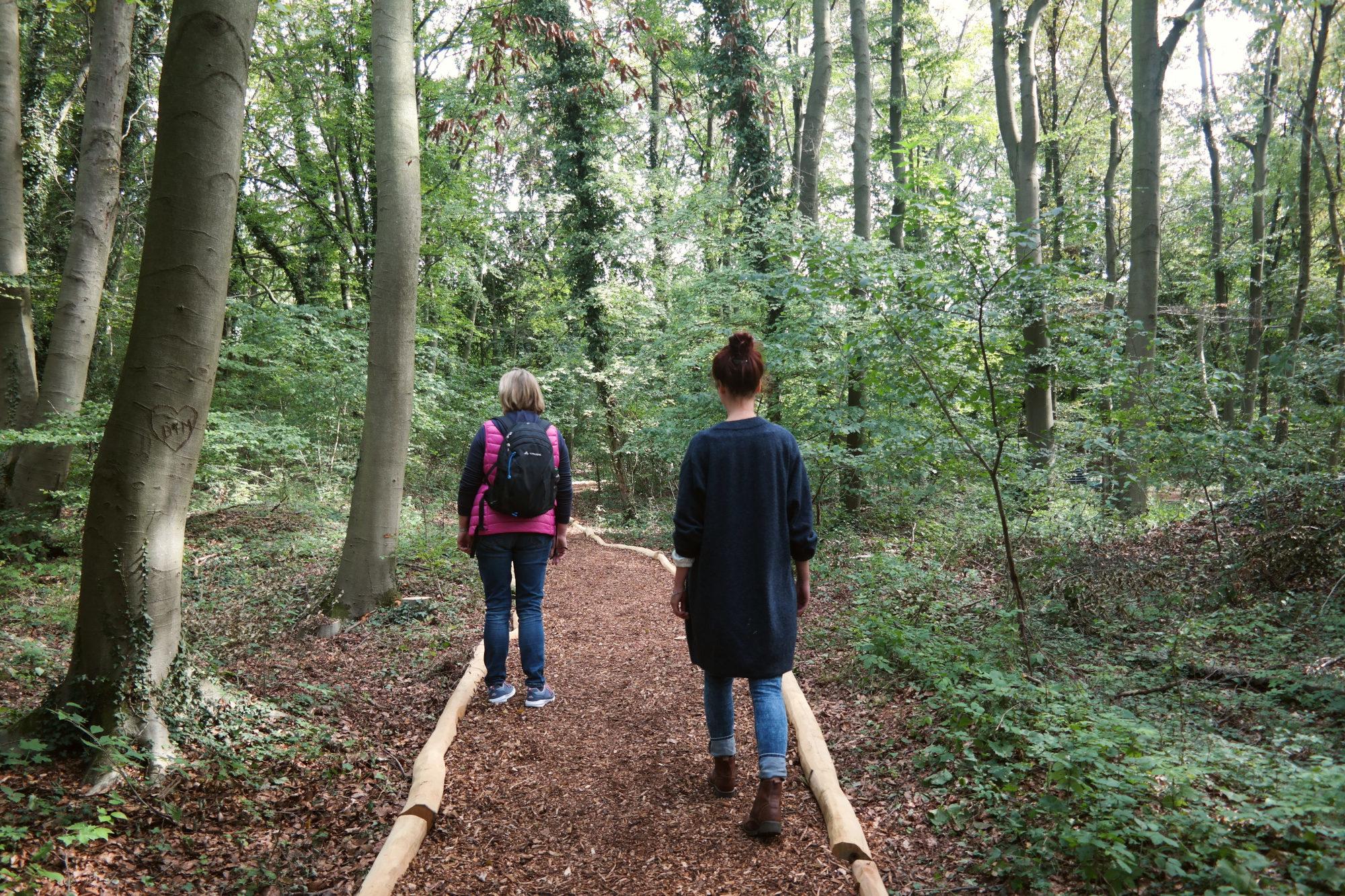 Wellness in de vier kuuroorden van het Osnabrücker Land